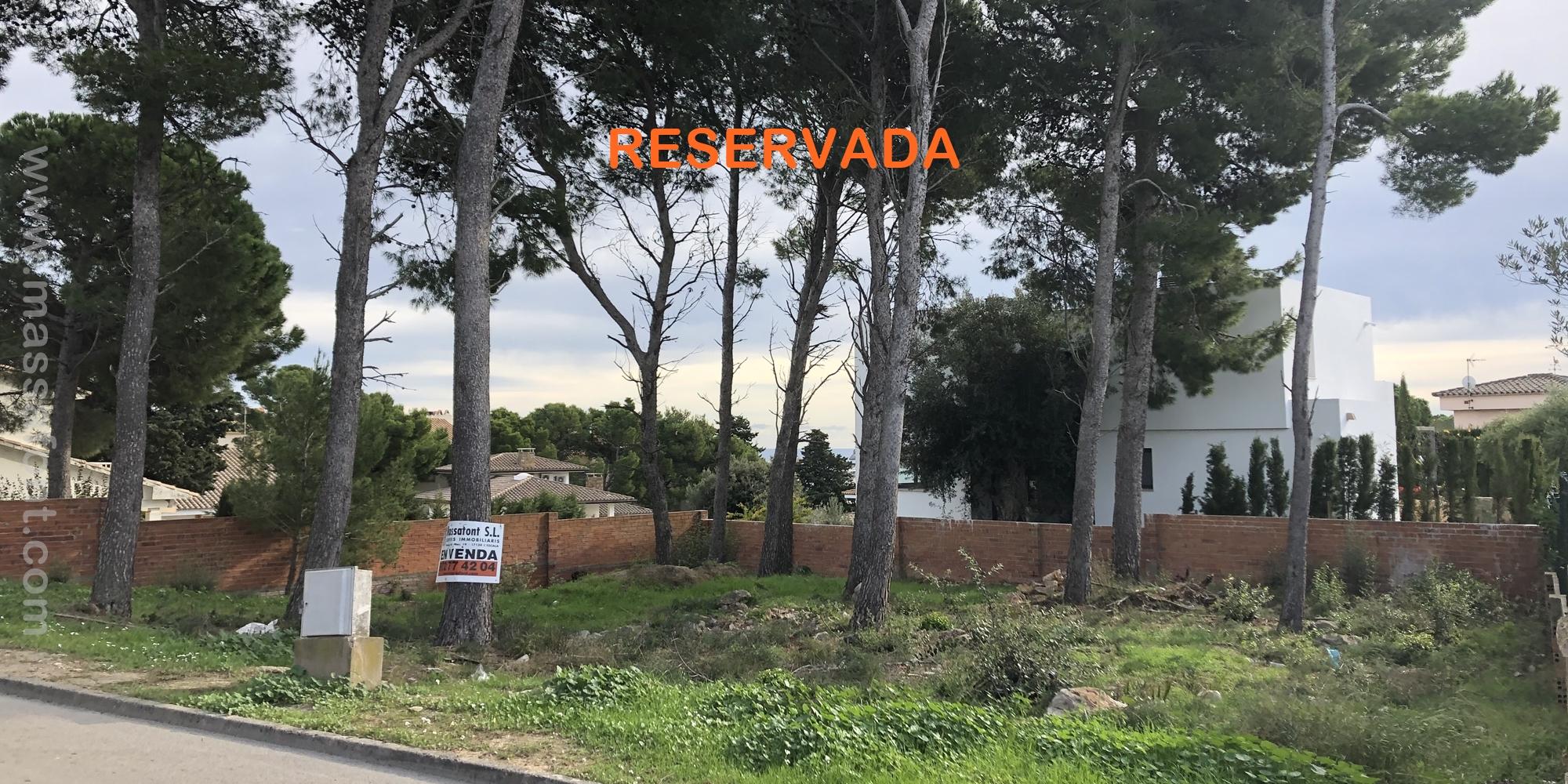 PARCELA EN EL PEDRÓ